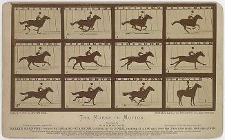 640px-Eadweard_Muybridge-Sallie_Gardner_1878